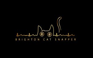 Brighton Cat Snapper logo on a black background